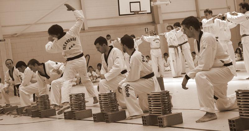 * Exhibició de Taekwondo 5