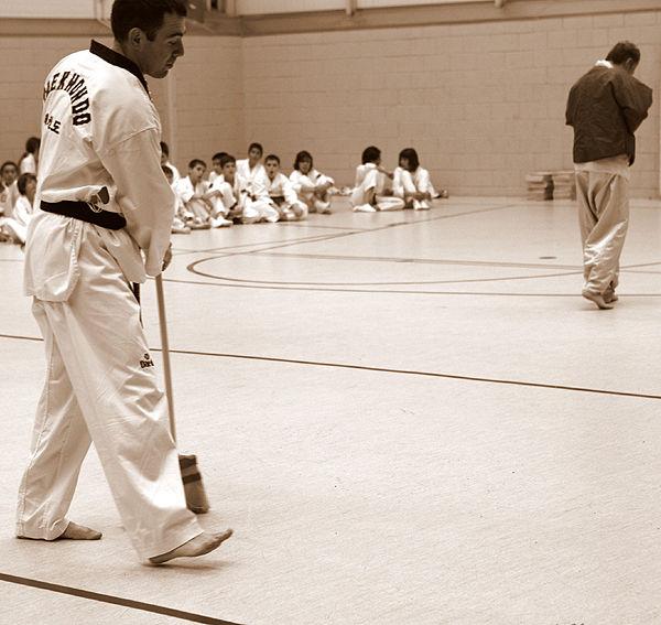 * Exhibició de Taekwondo 6