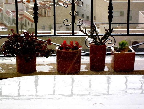 * Llums i colors d'Almeria 1