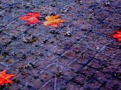 * Escolteu la pluja...! se'n va!