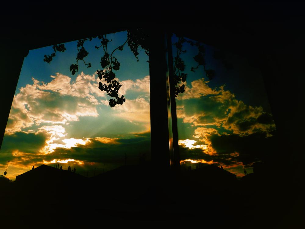 * La finestra oberta 19