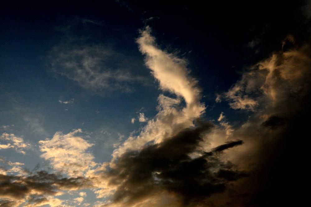 * Tan sols mirava el cel