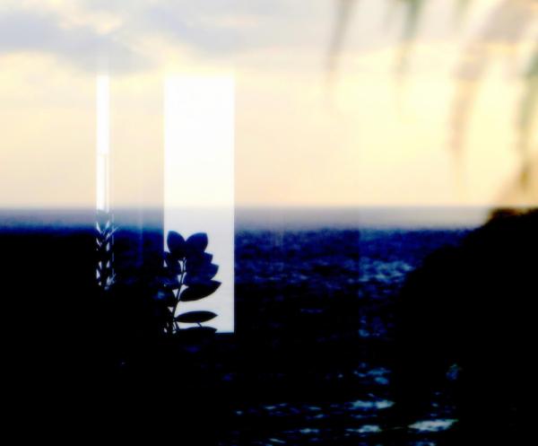* Abstracció