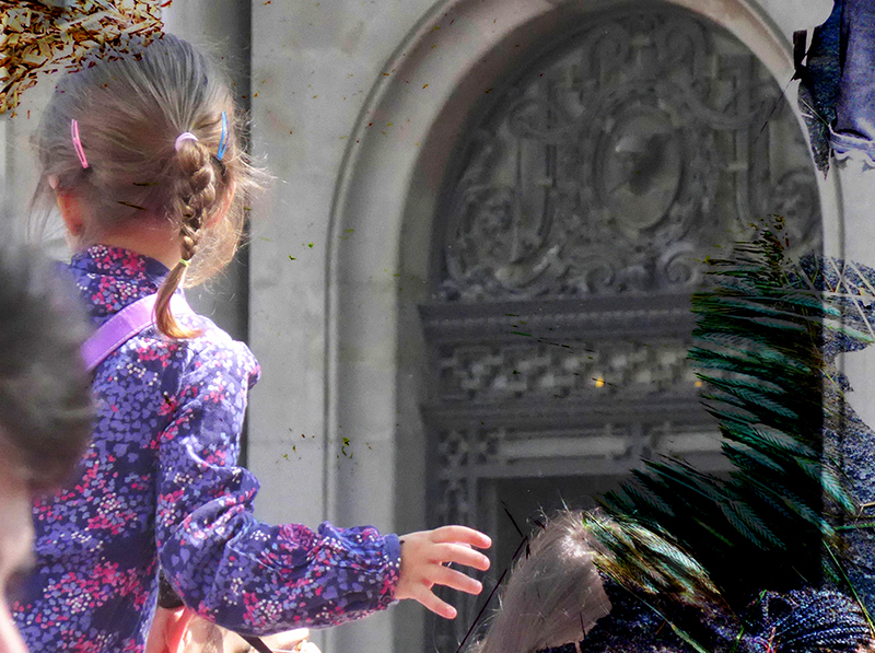 * Festa ciutadana. Sant Jordi 2016. 3