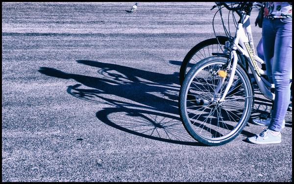 * Bicicletes i colom