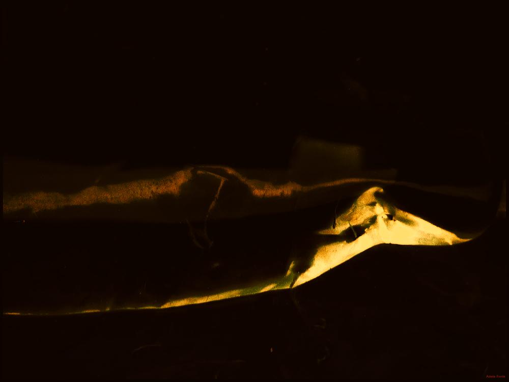 * Abstracte fosc