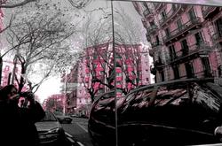 * Rosa i gris al carrer