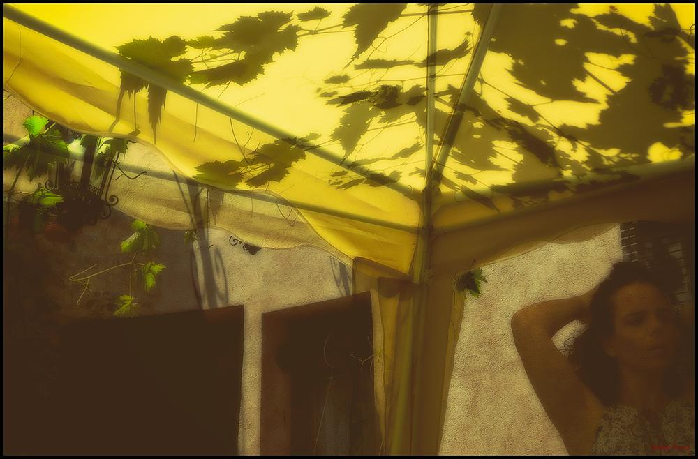 * Llum d'estiu