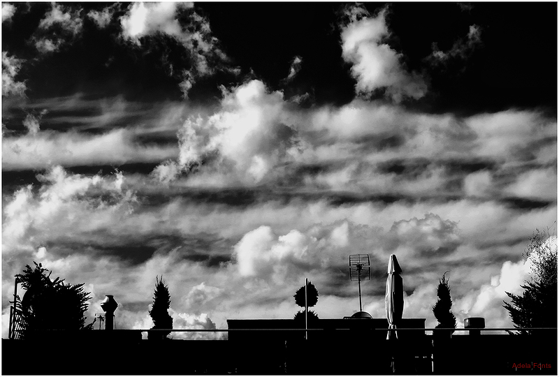 * Un paisatge al terrat