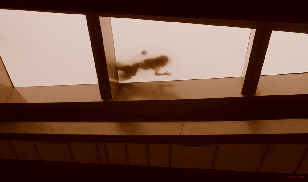 * La claraboia de l'edifici