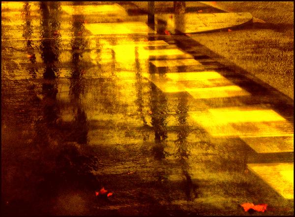 * Nit a la ciutat després de la pluja
