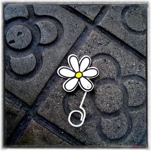 * Una flor urbana