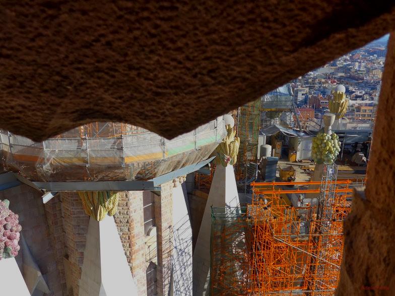 * Sagrada Família. Vista des d'una de les torres3