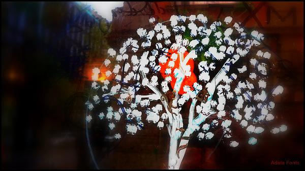 * Sakura el dia de Sant Jordi