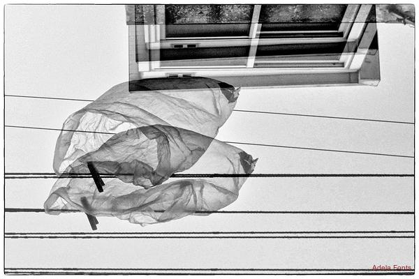 * La bossa que vola