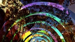 * Colors i llums al carrer