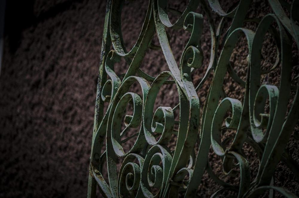 Un paseo por los jardines del Robledal 4