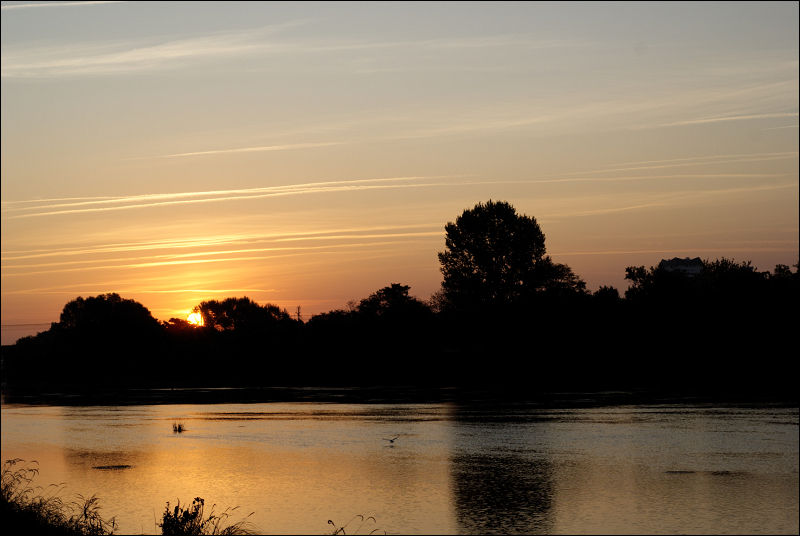 Lever de soleil sur les rives du Cher