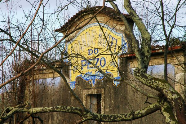 Nature taking over Grand Hotel do Pezo
