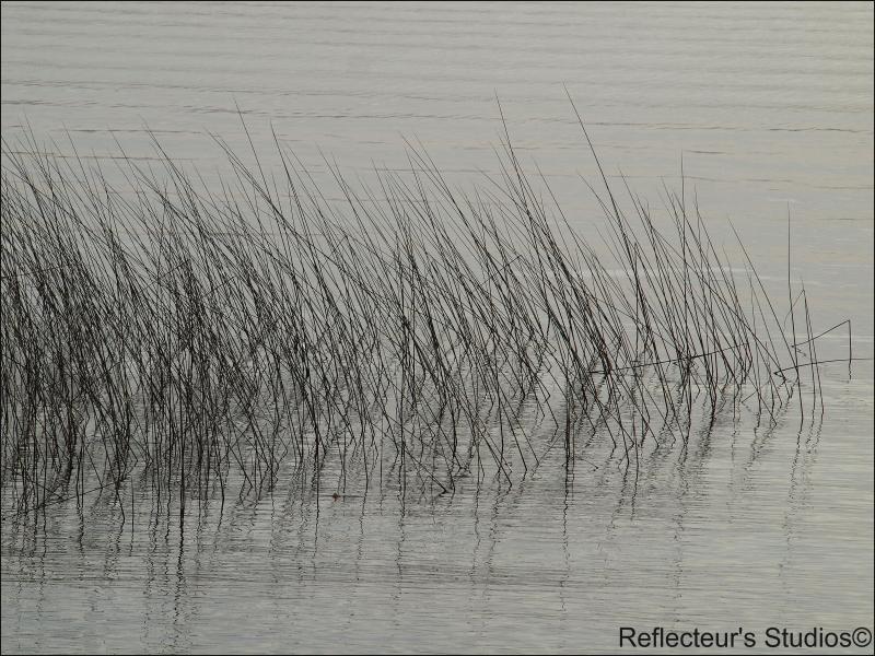 Lake's abstract reflecteurs värmland sweden