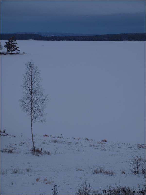 Left framed värmland tvällen sweden reflecteurs