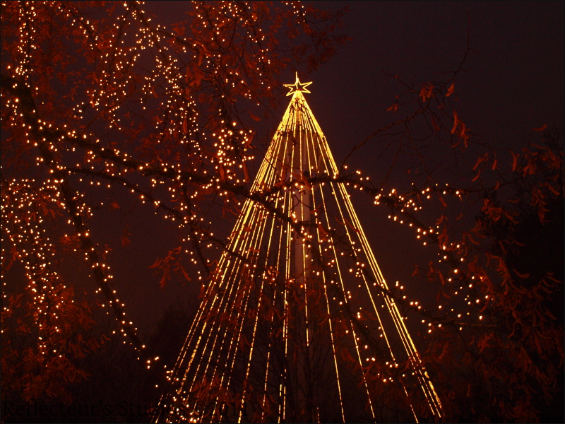 Merry Christmas reflecteurs studios