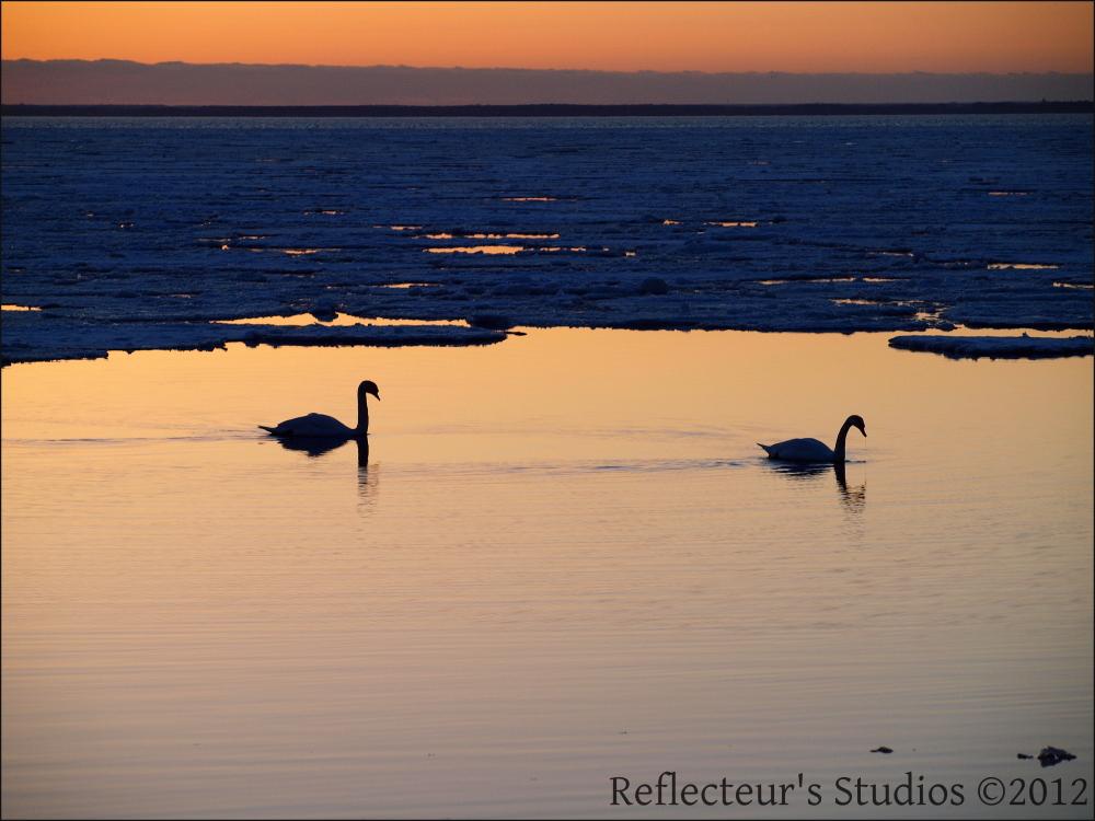 colours reflecteurs studios öland sweden
