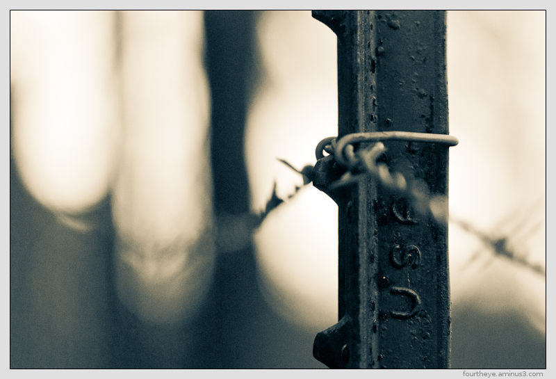 barbed wire abstract