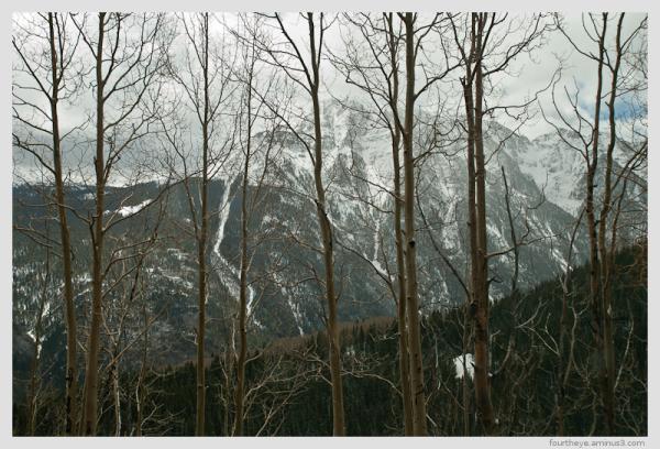 mountain snow storm