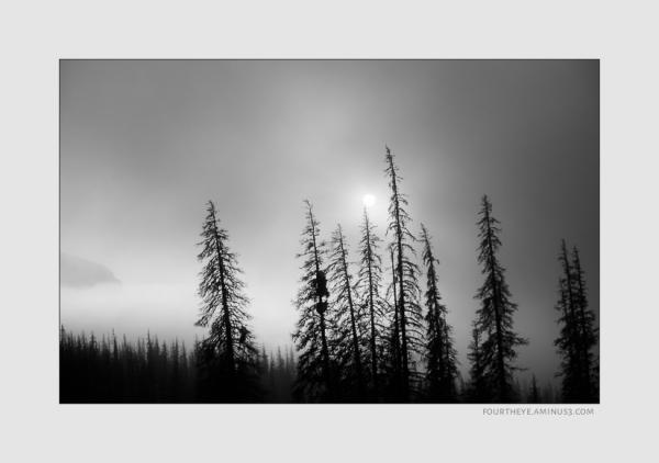 sun and mountain fog