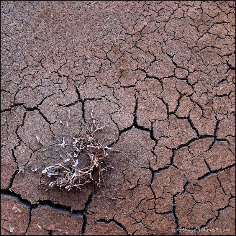 cracks in dirt