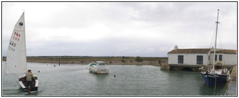 Loix en Ré (Ile de Ré) 2008; 20x60