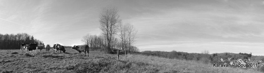 France, Limousin, Creuse