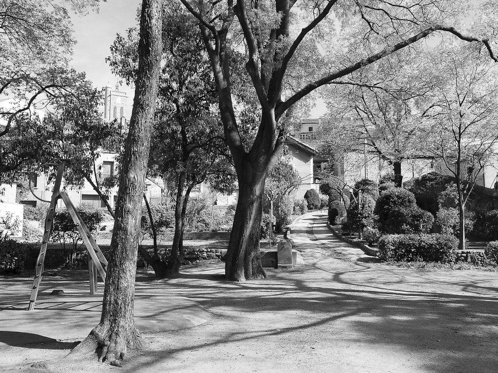 Servian hors saison  25 : Jardin de Latreille