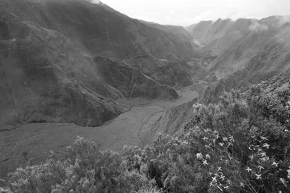 Réunion 34