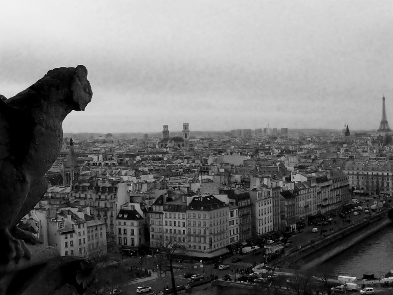 Des tours de Notre Dame (2)