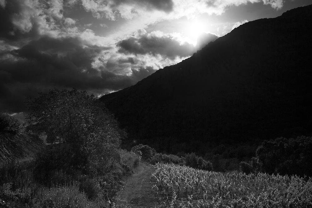 Le haut Languedoc (1)