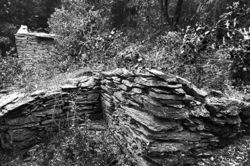 le mazet des collines (3)