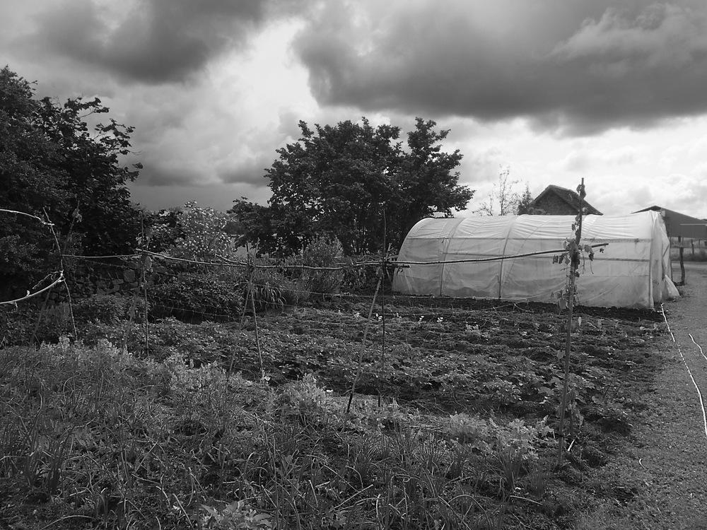 Aubusson, Creuse. Le potager