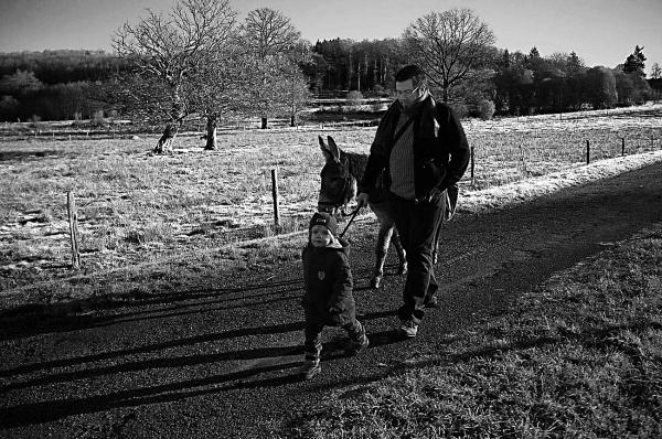 Promenade avec une âne.