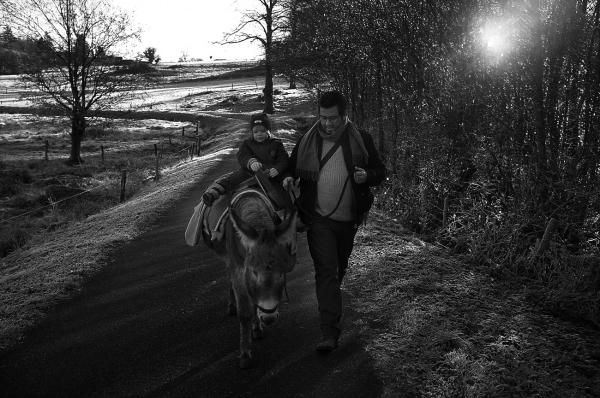 Promenade avec un âne