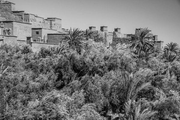 Dans le sud marocain (8)