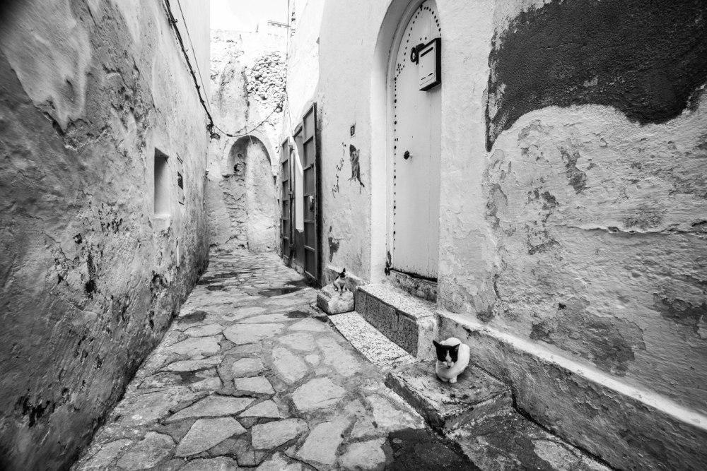 quelque part en Tunisie (3)