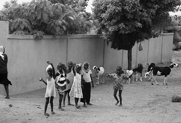 voyage d'avant : Sénégal (30)