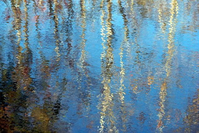 The Art of Reflections