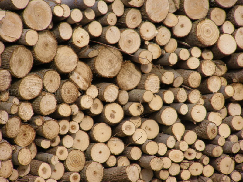 A stack of wood
