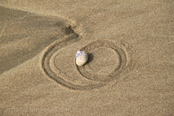 Snail trails