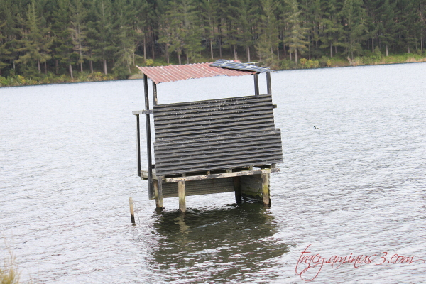 Water building