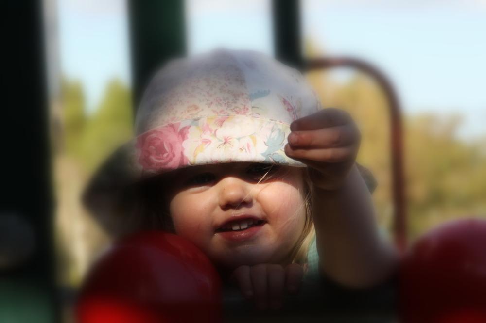 child's delight