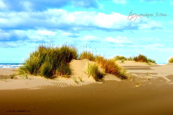 Sand conservation